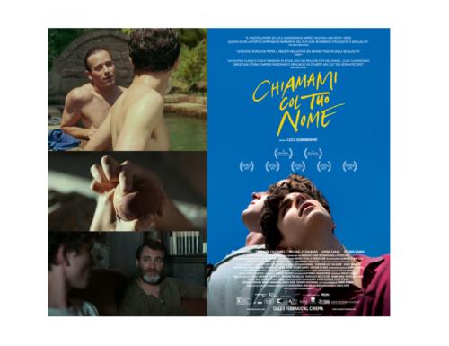 Chiamami col tuo nome (2017) – di Luca Guadagnino